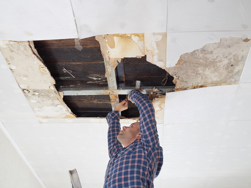 How Much Would Repairs Cost Me?